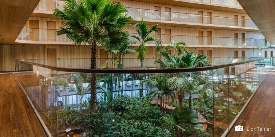 Pourquoi le parquet en bambou est le revêtement de sol de 2021 ?
