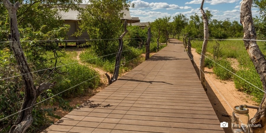 How environmentally friendly are bamboo decking boards?