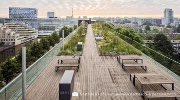 Decking_Amsterdam_Photo-credits-Dakdokters-Vesteda-Hans-van-Heeswijk-Architecten