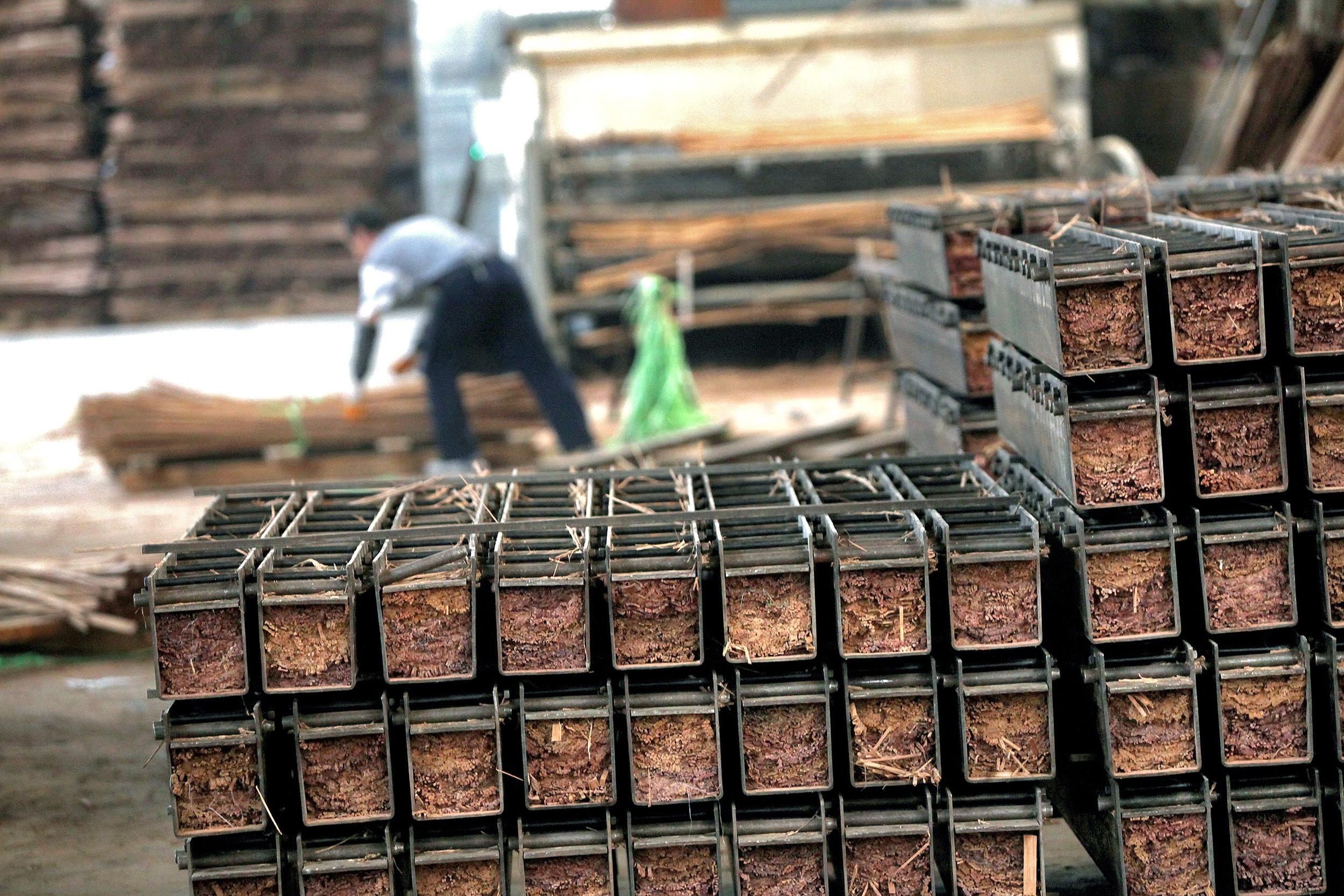 Duurzame productie van bamboe voor buiten